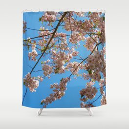 Cherry Blossoms and Blue Sky at Kew Gardens 2019 Shower Curtain