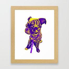 Diego the pug Framed Art Print