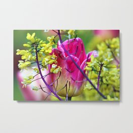 Pink tulip against yellow flowers Metal Print