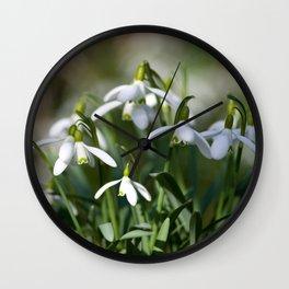 Floral Snowdrops! Wall Clock