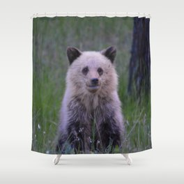 The most adorable grizzly bear cub in Jasper National Park | Canada Shower Curtain