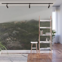 Highland Sheep Wall Mural