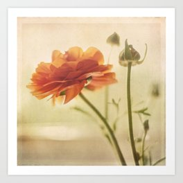 Vintage Bloom Art Print