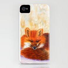 Red fox small nap   Renard roux petite sieste iPhone (4, 4s) Slim Case