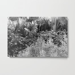 Island Garden 3 BW Metal Print