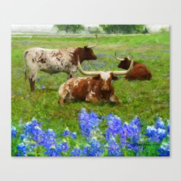 Daniel Adams The Texas Longhorns Herd  Canvas Print