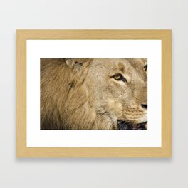 """""""I'm Not Comfortable with This"""" Framed Art Print"""