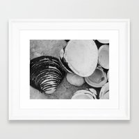 shells Framed Art Prints featuring shells by Dantastic Photos