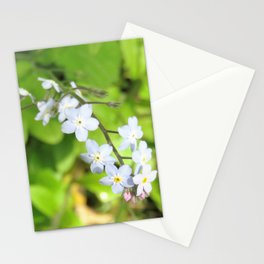 Malvern Bloom Stationery Cards