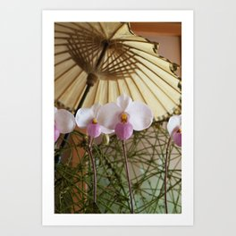 The Orchids Art Print