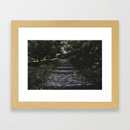 Wander - Nature Photography Framed Art Print