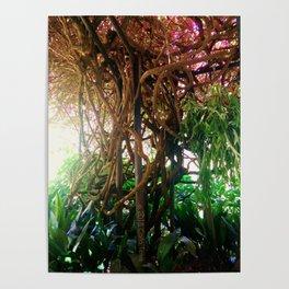 A Trip Through The Garden Poster