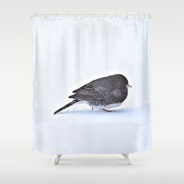 Long Journey Junco Shower Curtain
