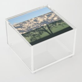 Shadow Tree on an industrial building Acrylic Box
