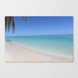 Heron Island, Great Barrier Reef, Australia Canvas Print