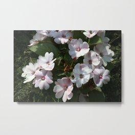 Longwood Gardens - Spring Series 166 Metal Print