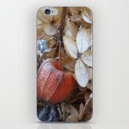 Last Lantern iPhone Skin