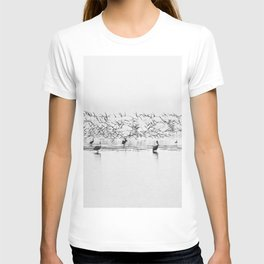 Flock of Terns and Pelicans in the Florida Bay T-shirt