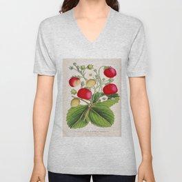 Strawberry Delights Vintage Botanical Floral Flower Plant Scientific Illustration Unisex V-Neck