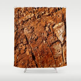 Wood - Texture and Colors Shower Curtain