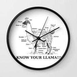 Llama Anatomy - Know Your LLAMA!!! Wall Clock