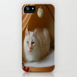 My cat is my zen master iPhone Case