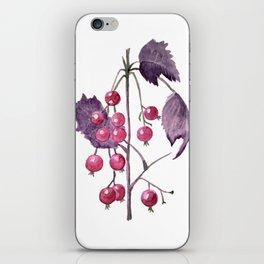 Watercolor Berries in Magenta iPhone Skin