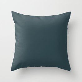 Plain  simple grey Throw Pillow