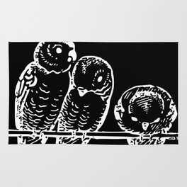 Three birds | Pudgies | Black Birds | Black Parakeets | Dark Arts Rug