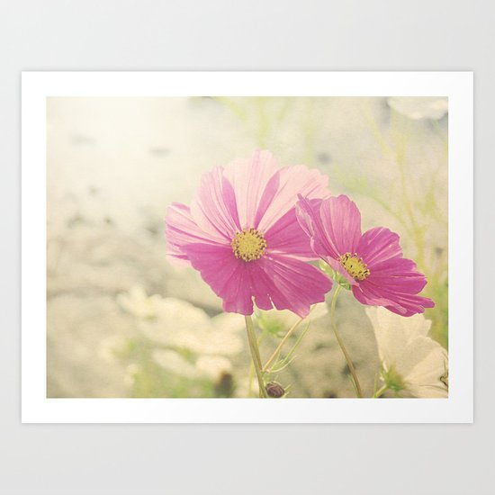 Vintage Cosmos in the Sun Art Print