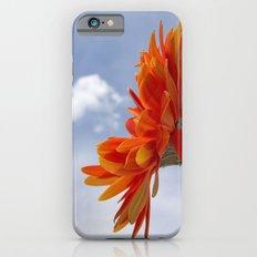 Sweet Delight iPhone 6s Slim Case