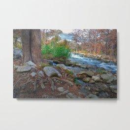 The Guadalupe River Metal Print