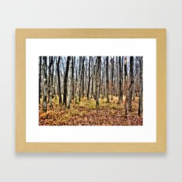 Fall in the Woods Framed Art Print