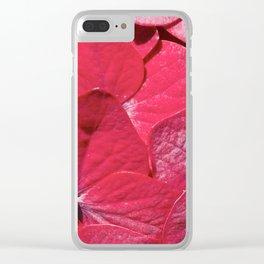 Hydrangea closeup Clear iPhone Case