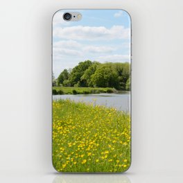 Summer meadow and river iPhone Skin