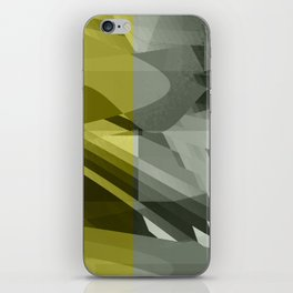 why was iPhone Skin