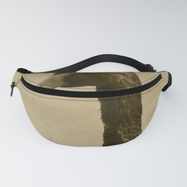 Black Swan 12 Tint Donegal Ireland Fanny Pack