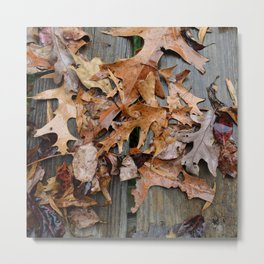 leaves in the rain Metal Print