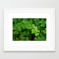 clover Framed Art Prints featuring Clover by Michelle McConnell