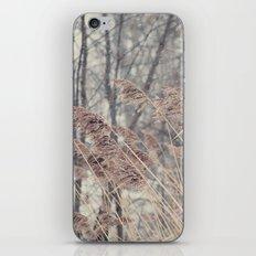 Swaying Grasses iPhone & iPod Skin