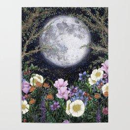 Midnight in the Garden II Poster