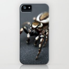 Jumping Spider iPhone Case
