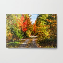 Fall in Vermont. USA. Metal Print