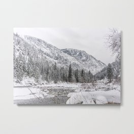Winter Wilderness Metal Print