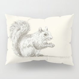 Squirrel at Rest Pillow Sham