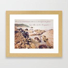 Ocean Wonder Framed Art Print