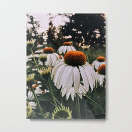 Floral park Metal Print
