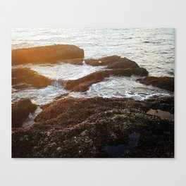 Filled up Canvas Print
