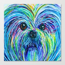 Shih Tzu Intense Colors Canvas Print