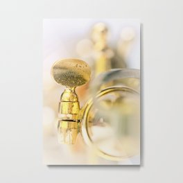 The other way around....  Metal Print